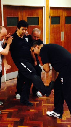 Kenpo Taijii and Multiple Attackers